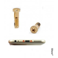 2 Vis Torx OR pour Apple iPhone 6